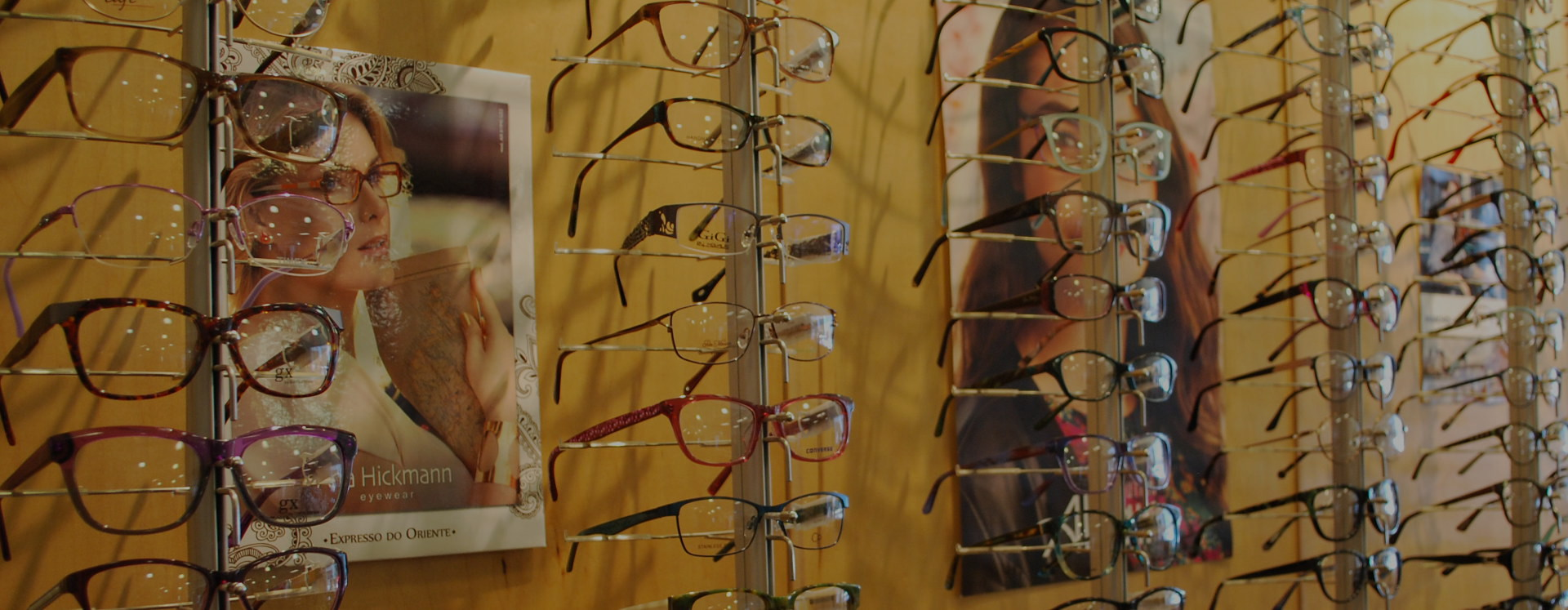 A Wall of Reading Glasses